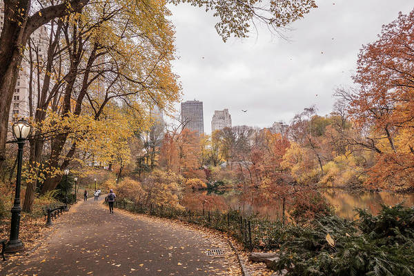 Wall Art - Photograph - Central Park In Autumn by June Marie Sobrito