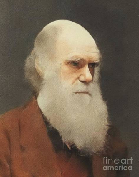 Biology Painting - Charles Darwin, Scientist by Mary Bassett