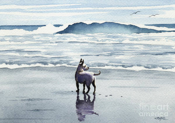Chihuahua Painting - Chihuahua At The Beach by David Rogers