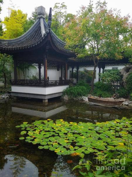 Photograph - Chinese Tea Garden  by Mary Capriole