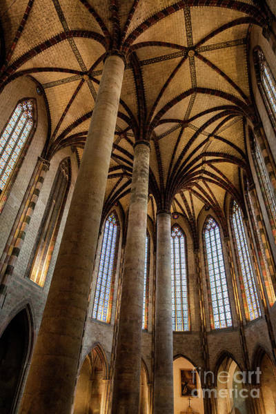 Wall Art - Photograph - Church Of The Jacobins Interior by Elena Elisseeva