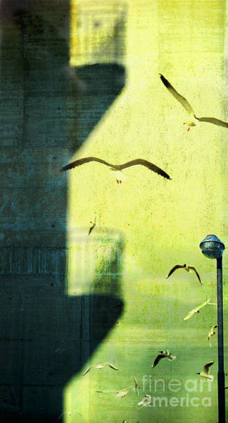 Photograph - City Shadow by Silvia Ganora