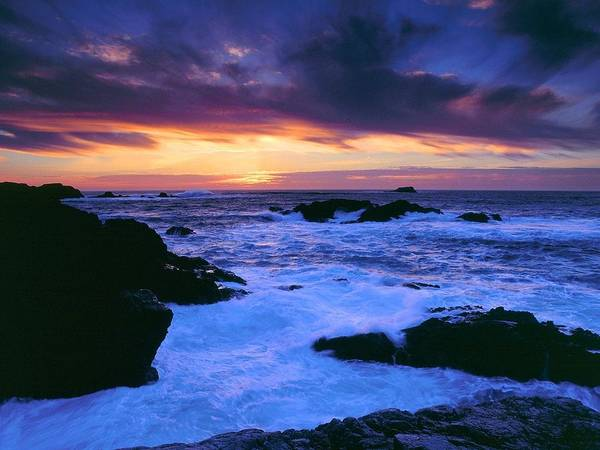 Sunset Digital Art - Coastline by Maye Loeser