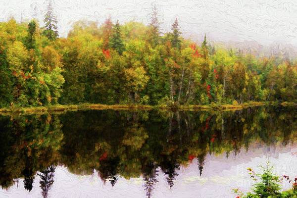 Digital Art - Colorful Trees Reflected In A Lake by Les Palenik