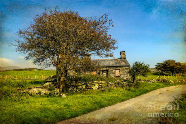 Derelict Wall Art - Photograph - Cottage Ruin by Adrian Evans