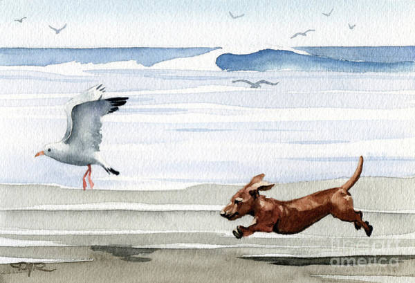 Seagull Painting - Dachshund At The Beach  by David Rogers