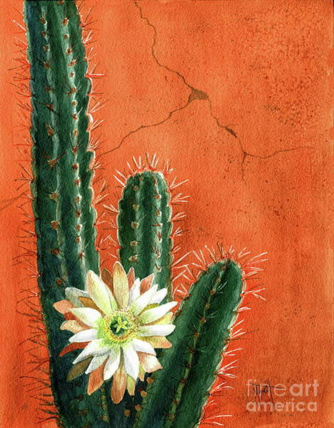 Adobe Walls Painting - Desert Delight by Marilyn Smith