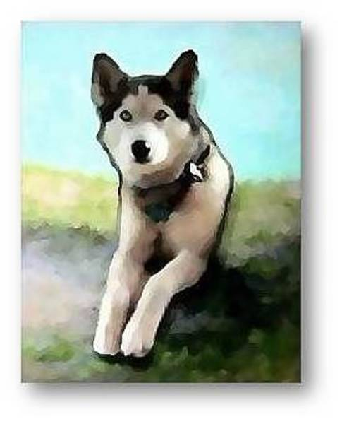 Husky Mixed Media - Dog's Day On The Dune by Brenda Garacci