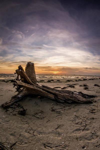 John Hancock Photograph - Driftwood Sunrise On Sanibel Island by John Hancock