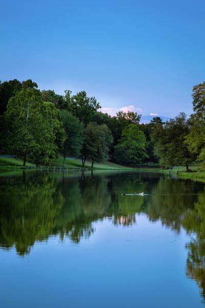 Photograph - 2 Ducks by James L Bartlett