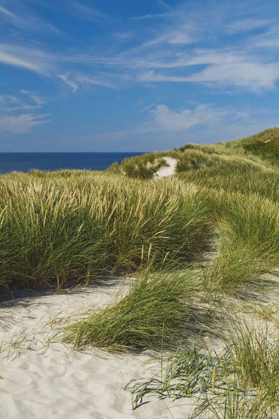 Wall Art - Photograph - Dunes by Wedigo Ferchland