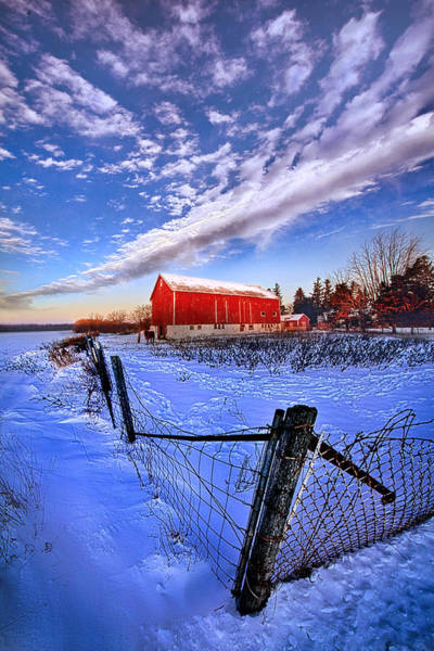 Photograph - Early To Rise by Phil Koch