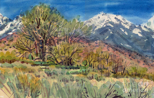 Sierra Wall Art - Painting - East Of The Sierra Nevadas by Donald Maier