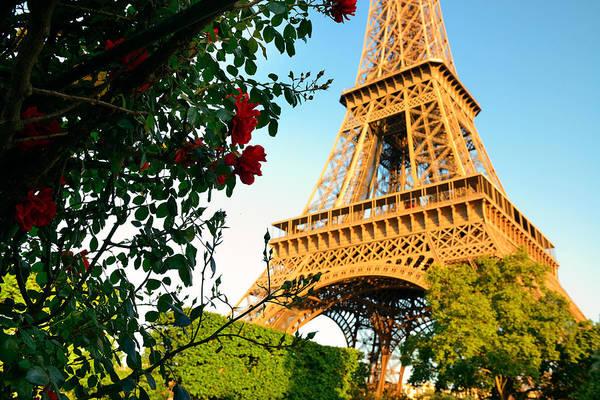 Photograph - Eiffel Tower Paris by Songquan Deng