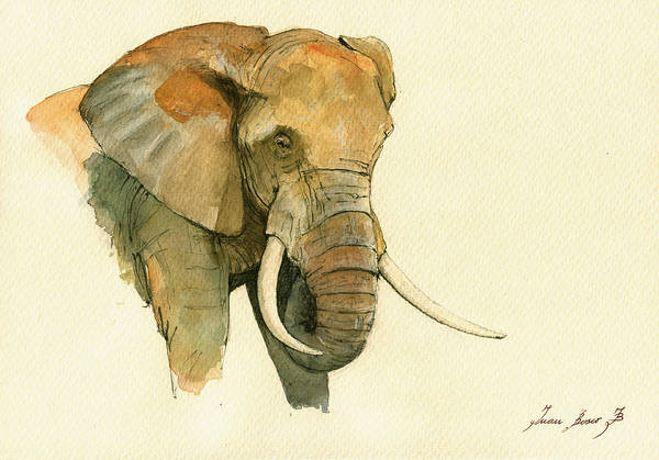 Wall Art - Painting - Elephant Painting           by Juan  Bosco