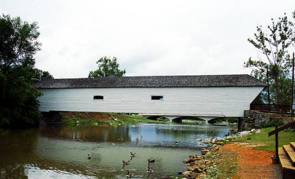 Photograph - Elizabethton, Tn, Covered Bridge, 2008 by Frank Romeo