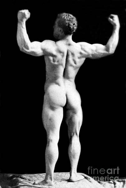 Wall Art - Photograph - Eugen Sandow, Father Of Modern by Science Source