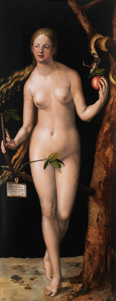 Wall Art - Painting - Eve by Albrecht Durer