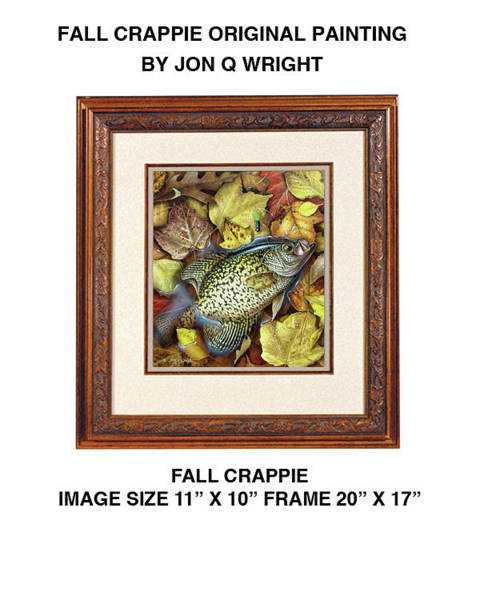 Freshwater Wall Art - Painting - Fall Crappie by JQ Licensing