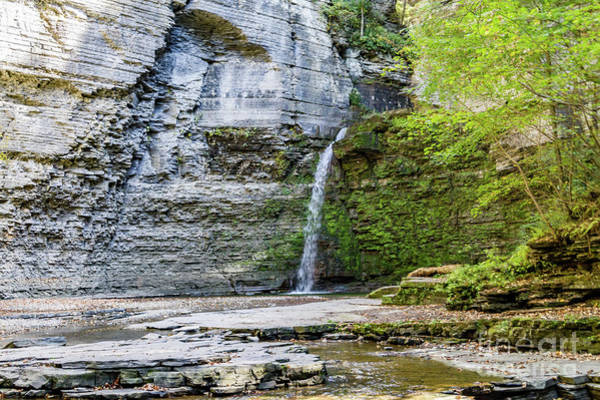 Photograph - Falling Water by William Norton