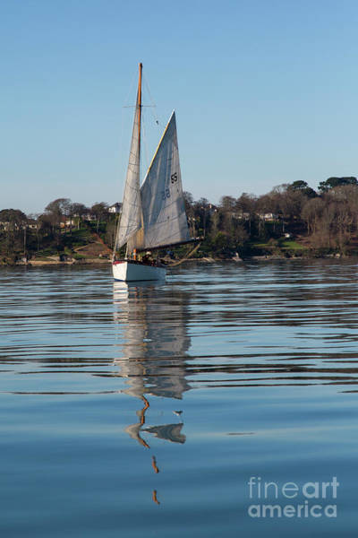 Photograph - Falmouth Oyster Boat by Brian Roscorla