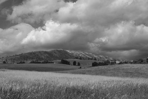 Photograph - Farm  by Mark Smith