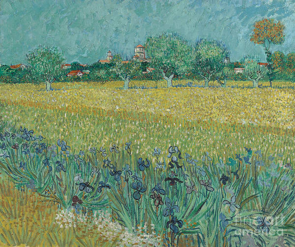 Wall Art - Painting - Field With Flowers Near Arles, 1888 by Vincent Van Gogh
