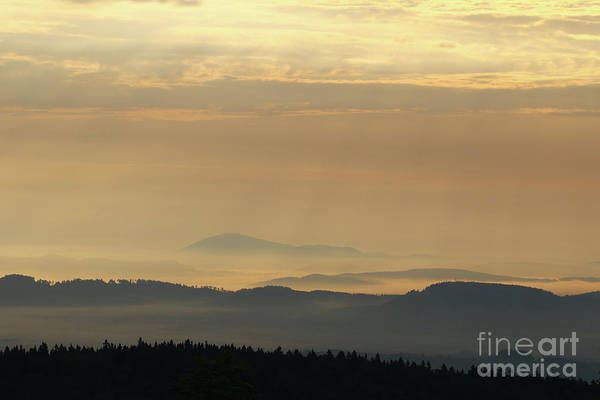 Woodland Wall Art - Photograph - Forested Hills In Early Morning Mist by Michal Boubin