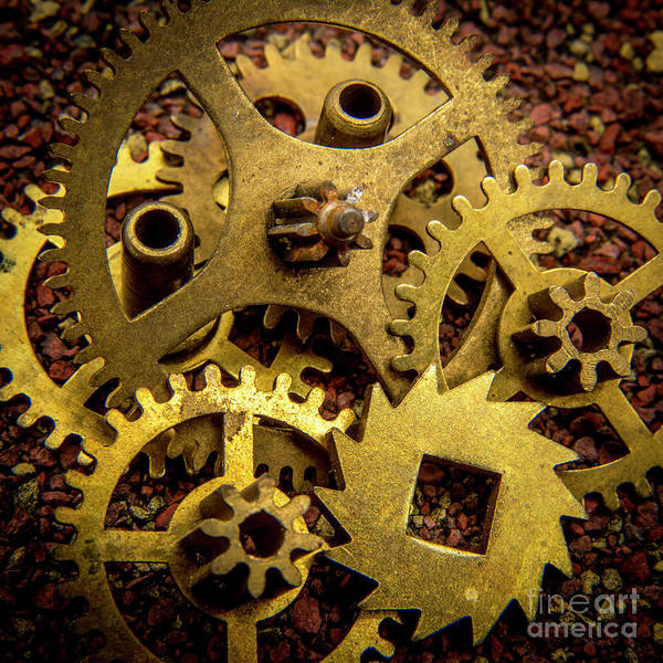 Wall Art - Photograph - Gears by Bernard Jaubert