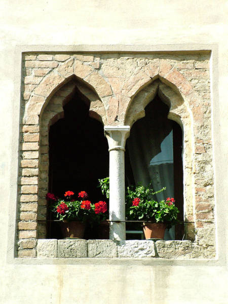 Photograph - 2 Geraniums In Ornate Window by Donna Corless