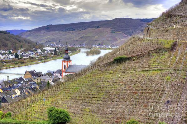 Photograph - German Wine Country by Juli Scalzi