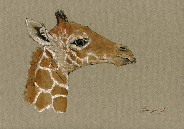 Wall Art - Painting - Giraffe Head Study  by Juan  Bosco
