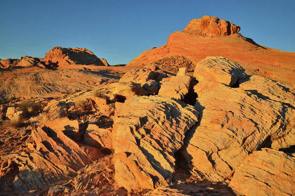 Photograph - Golden Sunrise In Valley Of Fire by Ray Mathis