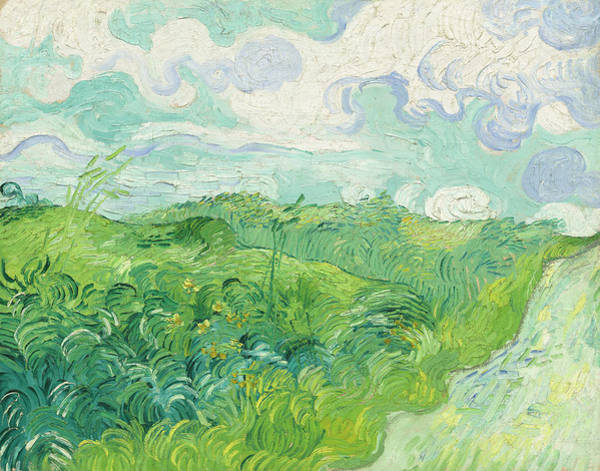 Painting - Green Wheat Fields by Vincent Van Gogh