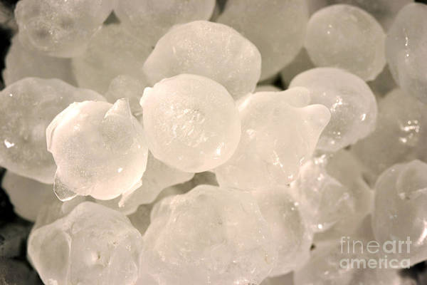 Photograph - Hail Stones by Ted Kinsman