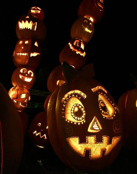 Photograph - Halloween - Carved Pumpkin by Cristina Stefan