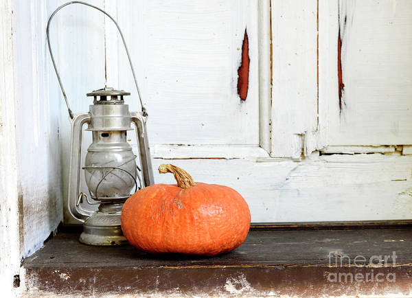 Wall Art - Photograph - Halloween Pumpkin by Jelena Jovanovic