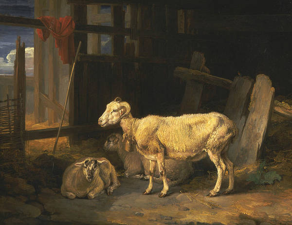 Ward Painting - Heath Ewe And Lambs by James Ward