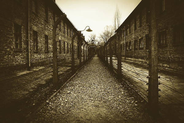 Concentration Camp Photograph - Hell On Earth by Pixabay