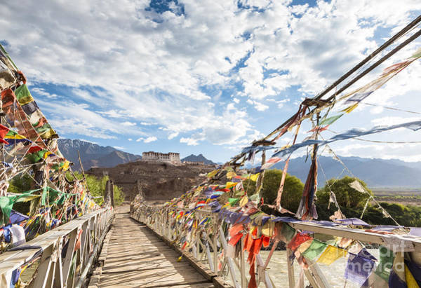 Photograph - Hemis Monastery In Ladakh In India by Didier Marti