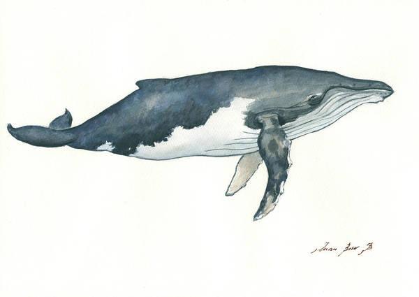 Wall Art - Painting - Humpback Whale by Juan Bosco