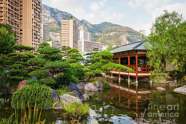 Wall Art - Photograph - Japanese Garden In Monte Carlo. by Elena Elisseeva
