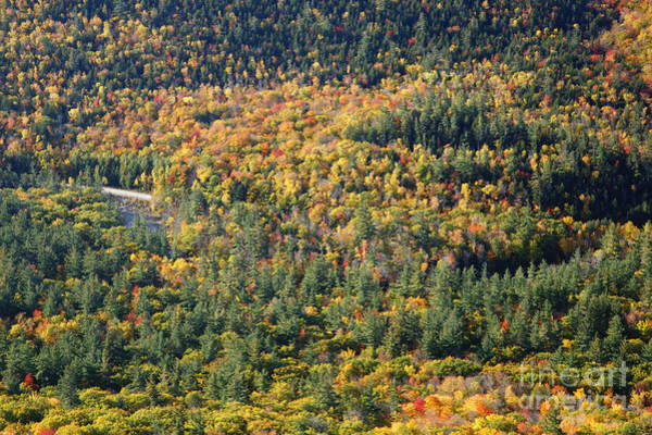 Photograph - Kancamagus Highway - White Mountains New Hampshire Usa by Erin Paul Donovan