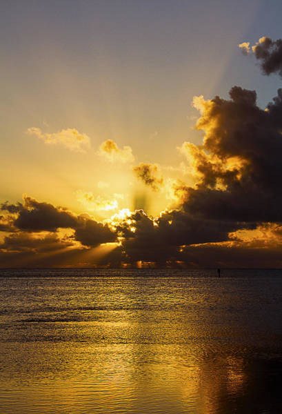 Photograph - Key West Sunrise 19 by Bob Slitzan