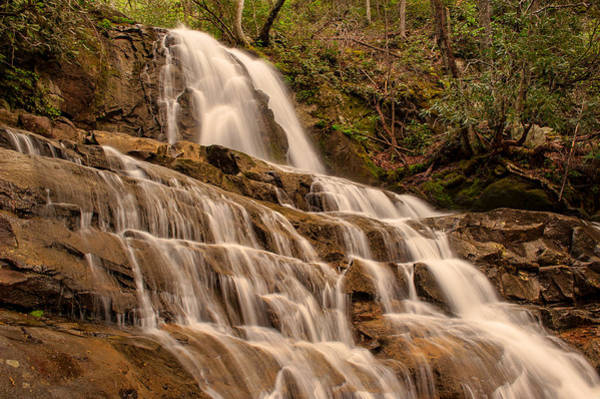 Photograph - Laurel Falls by Brenda Jacobs