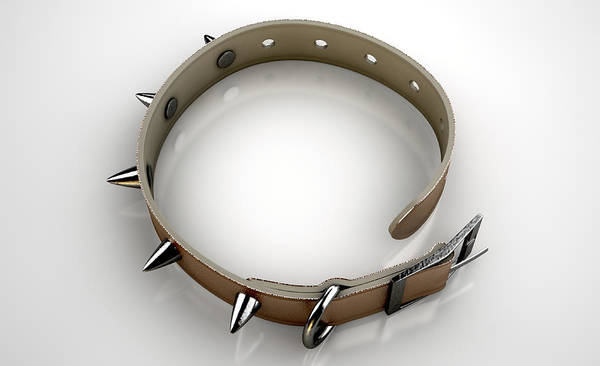 Wall Art - Digital Art - Leather Studded Collar by Allan Swart