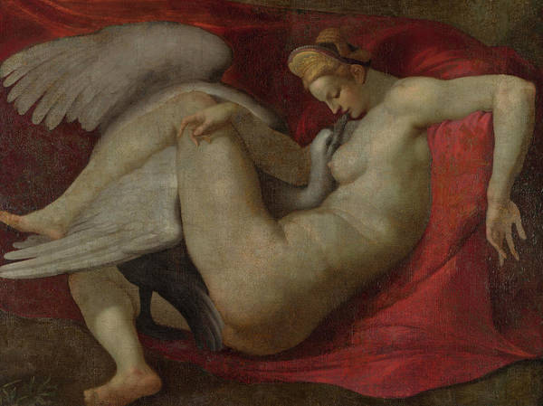 Michelangelo Wall Art - Painting - Leda And The Swan by After Michelangelo