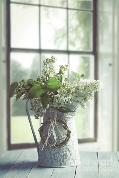 Wall Art - Photograph - Lilac Flowers Still Life by Amanda Elwell