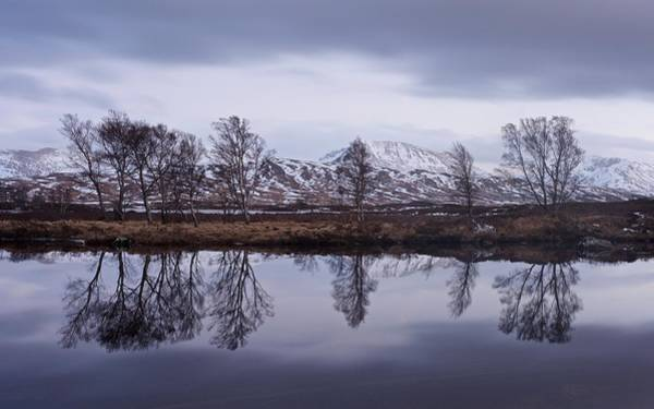 Photograph - Loch Ba  by Stephen Taylor