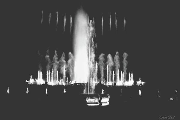 Photograph - Longwood Gardens Fountains Black And White by Trina Ansel